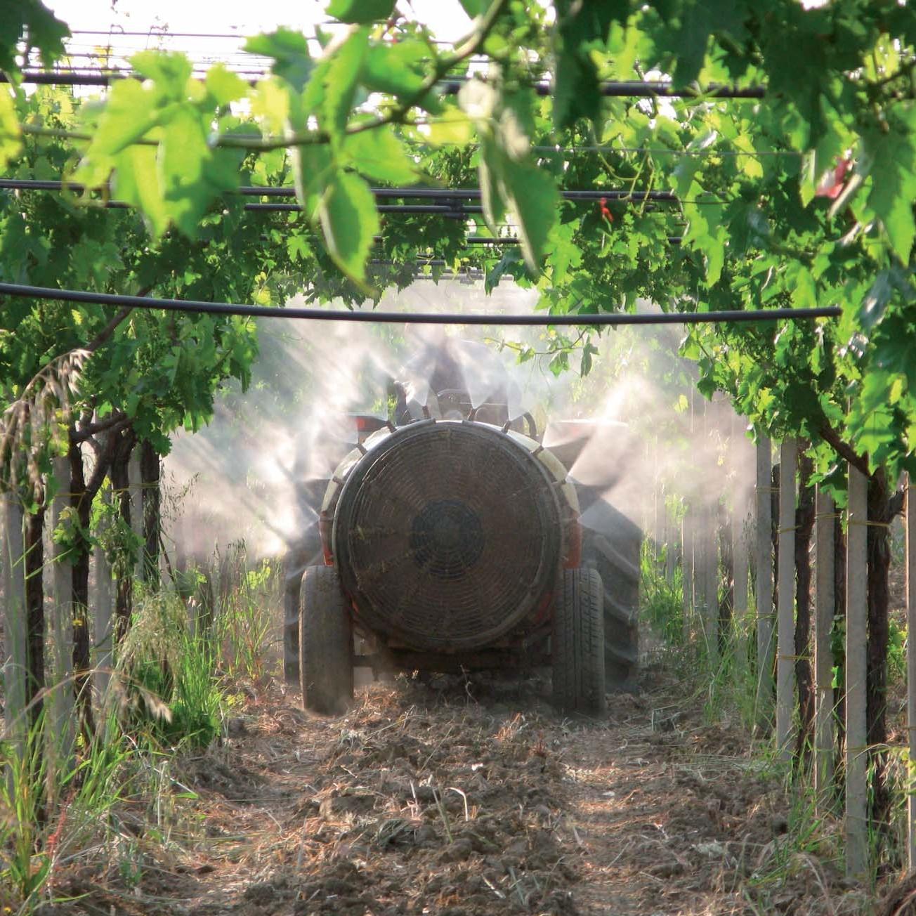 Prodotti fitosanitari agricoltura biologica